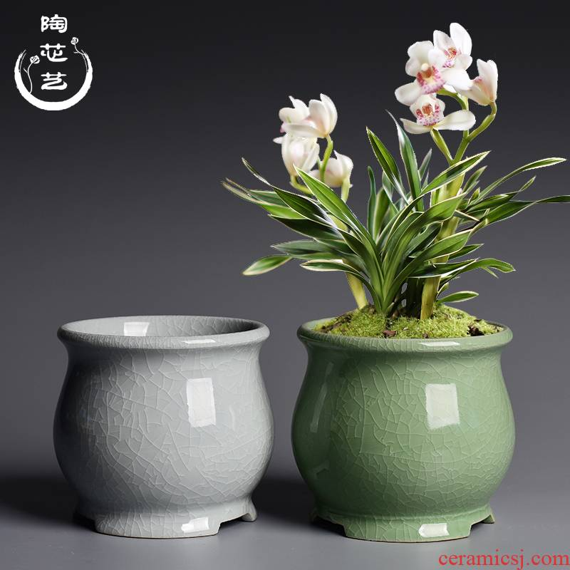 Creative desktop special green plant bonsai POTS butterfly orchid flower POTS, the elder brother of the ceramic up open a piece of household bracketplant orchid flower POTS