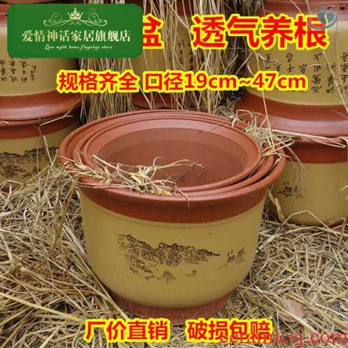 High - grade purple sand flowerpot basin orchid name plum bonsai POTS extra - large ceramic flower pot