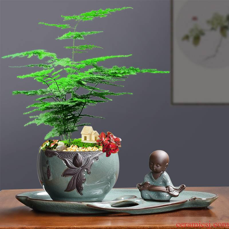 Ceramic POTS creative office planted flowers miniascape green plant, fleshy retro elder brother up with contracted grass calamus move cooper