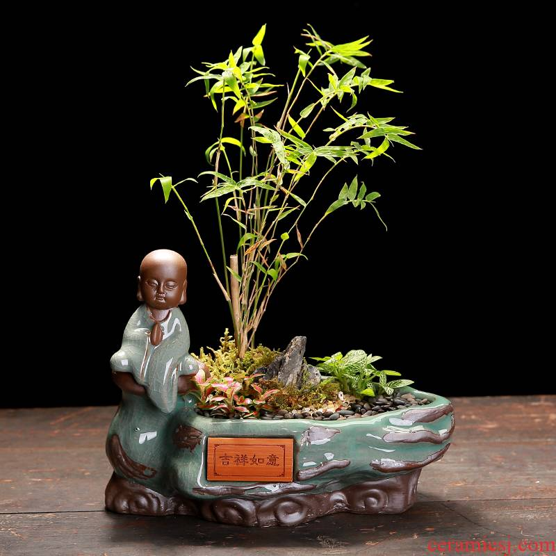 The Elder brother up with ceramic creative special offer a clearance indoor desktop restoring ancient ways, green potted meat more calamus asparagus bonsai POTS