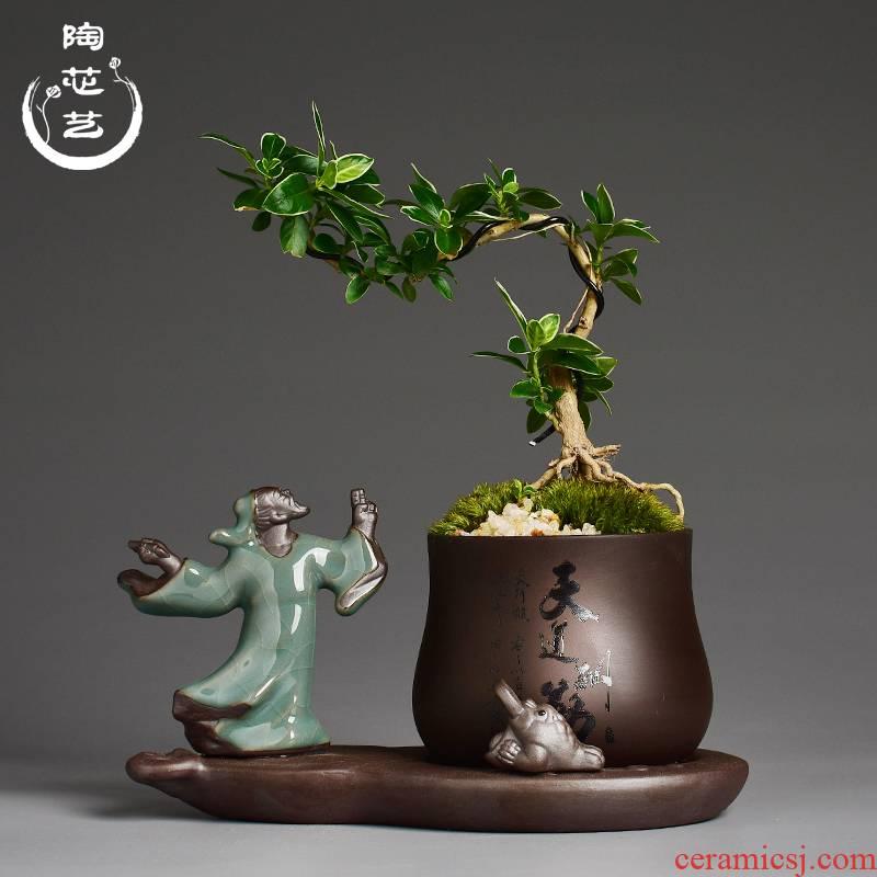 Zen purple sand flowerpot more meat little monks combination asparagus potted bonsai the plants household creative desktop small place