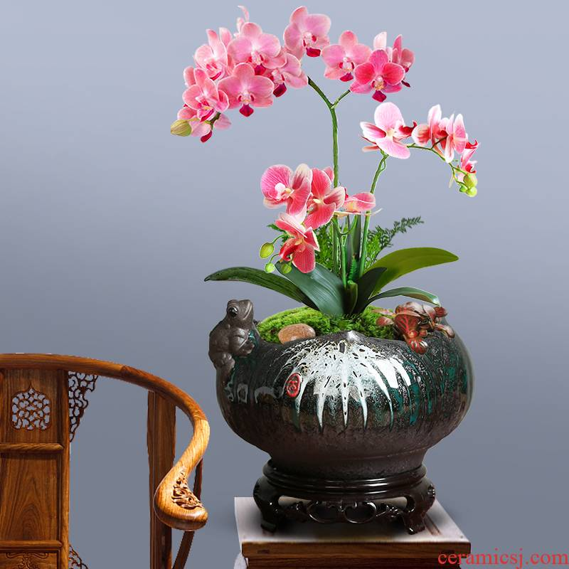 Ceramic color butterfly orchid hand pot contracted move green plant jasmine clove bonsai pot with new bottom seat