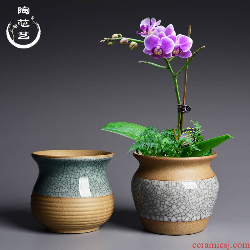 Elder brother up drive chip ceramic flower pot in the creativity of meat plant is potted device desktop, green plant butterfly orchid coarse pottery flowerpot