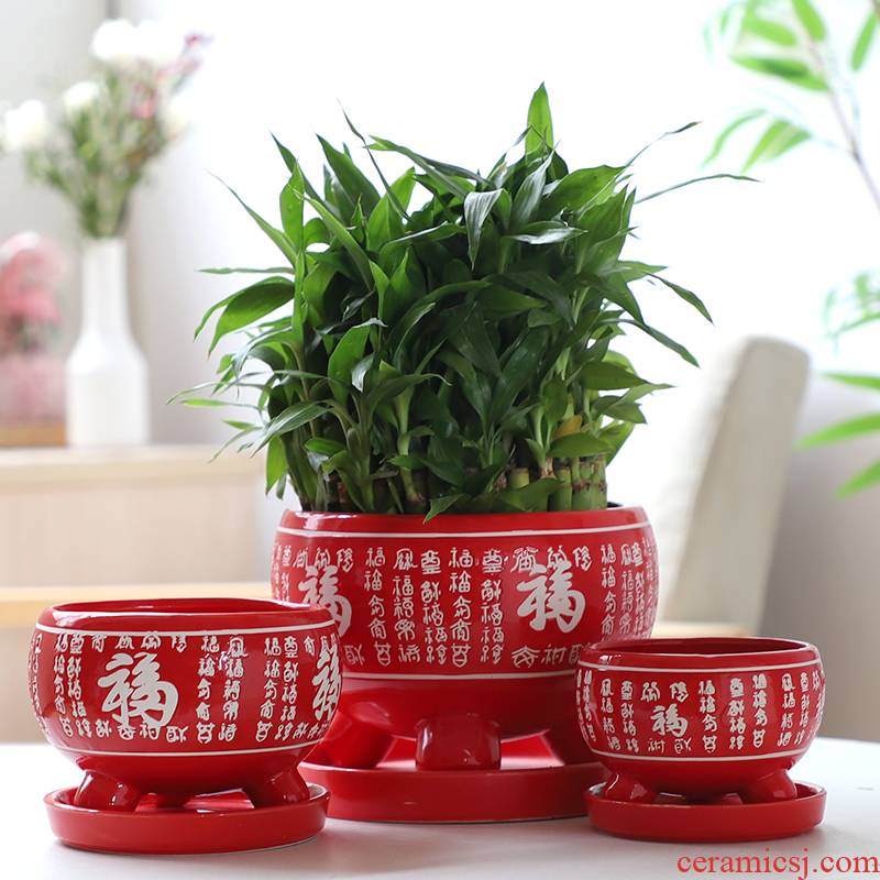 Chinese red ave flowerpot ceramic indoor large - sized belt tray bracketplant individuality creative contracted more than other meat flowerpot