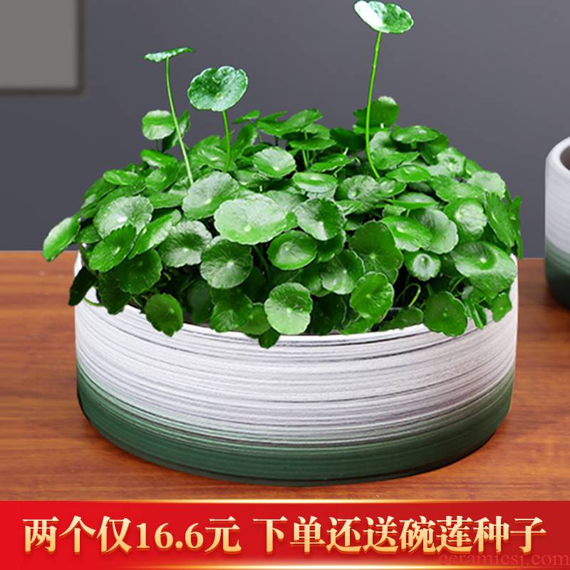 Special ceramic refers to flower pot grass cooper water lily bowl lotus hydroponic contracted creative new product without hole size basin