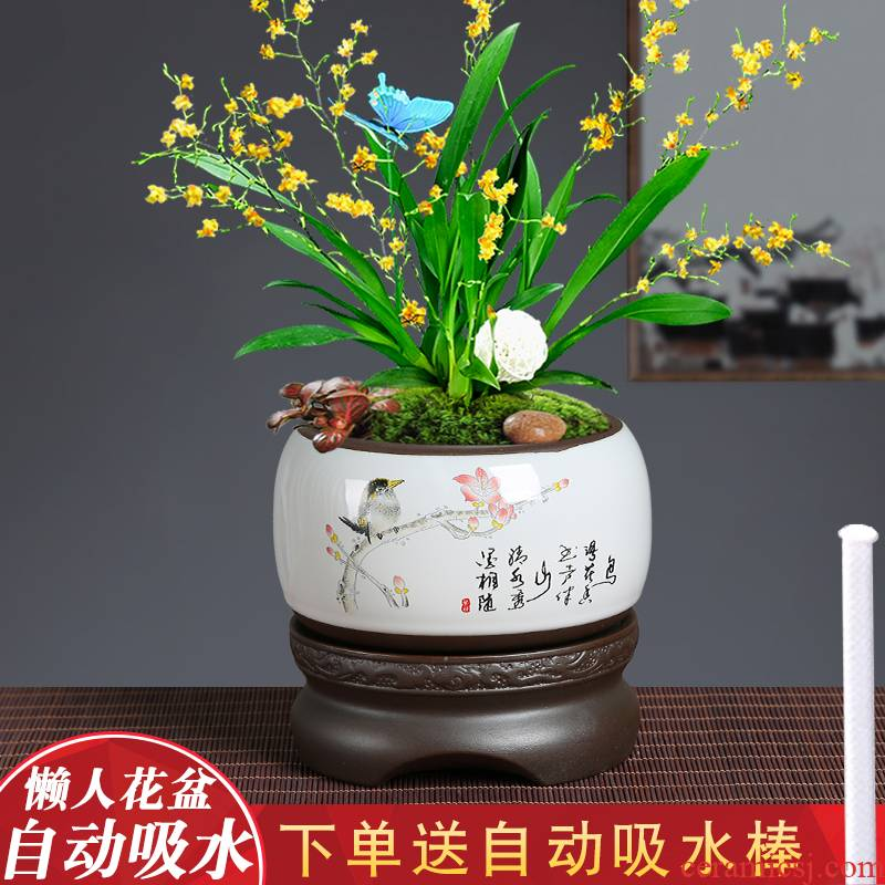 Celadon colorful butterfly orchid lazy flowerpot hand - made contracted creative purple ceramic green plant flower implement automatic suction
