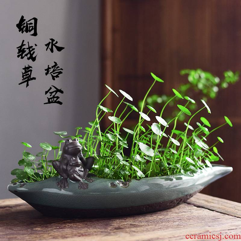 Elder brother up with contracted fleshy grass cooper refers to flower POTS of creative move nonporous hydroponic lucky bamboo leaf ceramic POTS