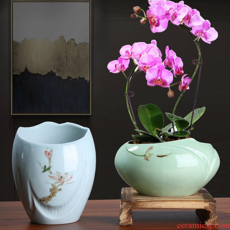 Large flower pot in twelve Chinese rose, celadon ceramic green plant, fleshy asparagus I and contracted creative orchid is special