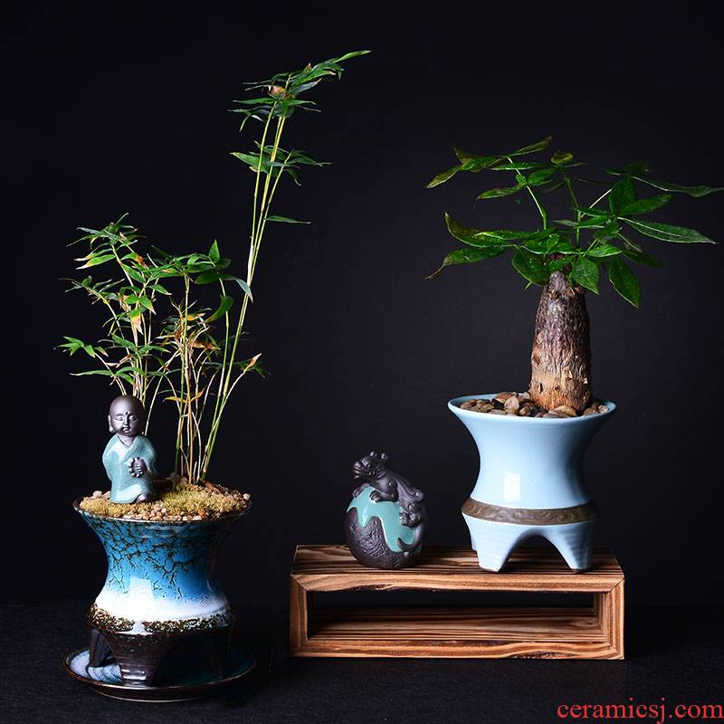 Contracted asparagus rich tree green plant bracketplant money plant flower POTS, fleshy basin combination of new Chinese style creative ceramic pot