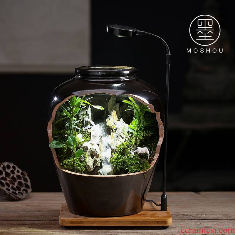 By sumeru world creative ceramic tank micro potted landscape water, tea pet Chinese zen furnishing articles