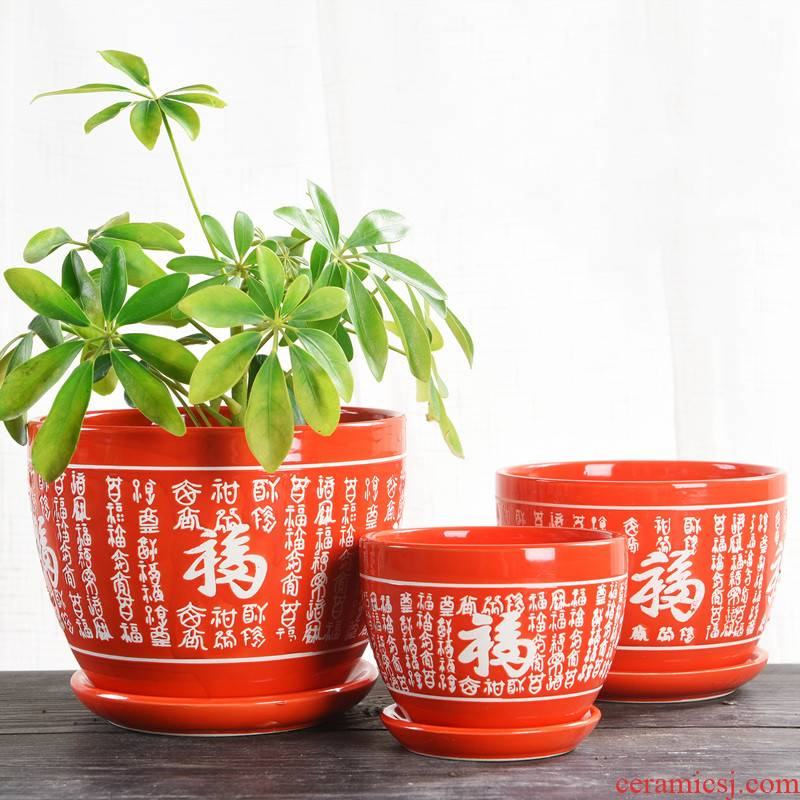 Chinese style wedding festival red ceramic large flowerpot more than other meat special butterfly orchid flower seedlings and potted flower pot