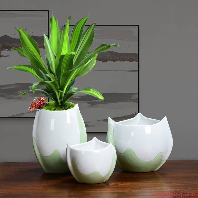 Ceramic green plant large special pot money plant orchid fleshy the plants potted special simplicity Nordic desktop clearance