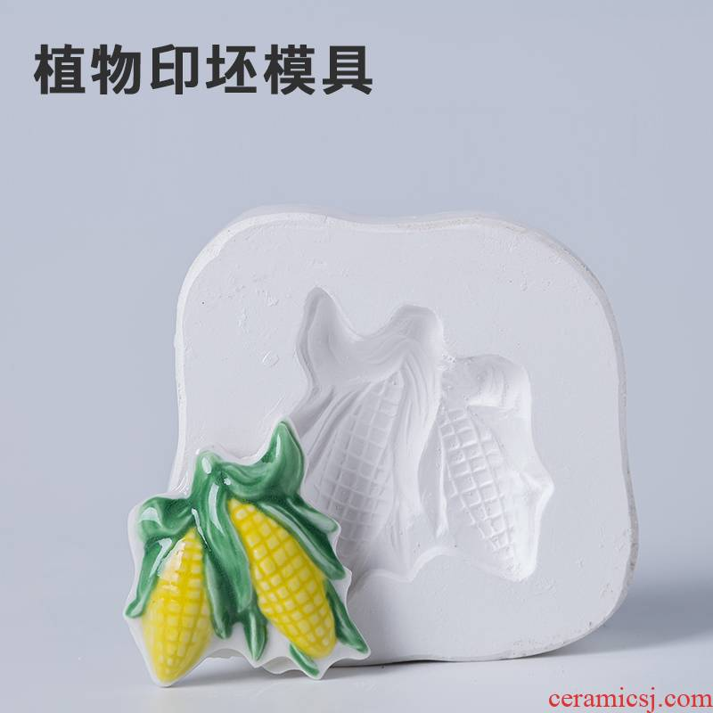 Printing mould gypsum ceramic mold ceramic mold suit children ceramic art would plant billet mold