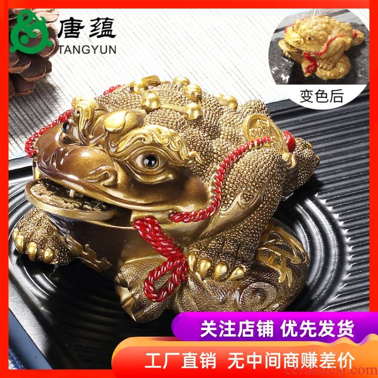 Feng shui, golden cicada three - legged toad furnishing articles spittor fortune prosperous wealth home furnishing articles town house hot water color tea tea of a pet