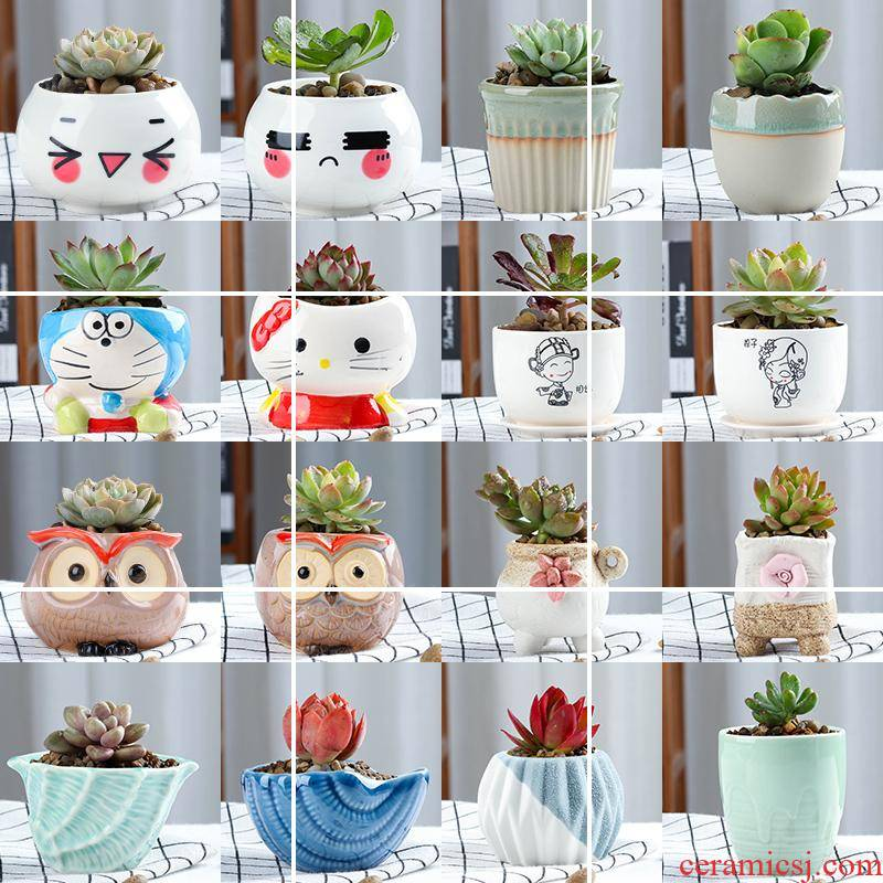 Fleshy potted flower pot small creative move ceramic indoor the plants flowers, Fleshy meat meat thumb
