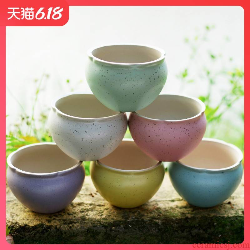 Large diameter meat flowerpot marca dragon candy color more meat meat platter ceramic I and contracted special price 18 yuan package mail