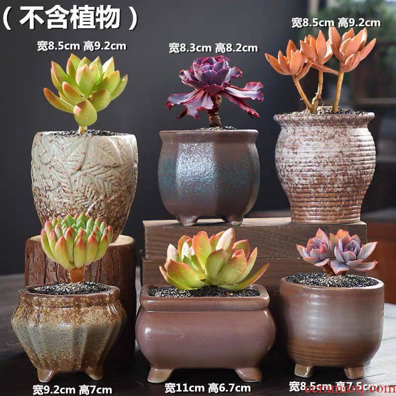 Fleshy flower pot set combination special package mail large diameter coarse pottery breathable retro move meat meat small potted the plants