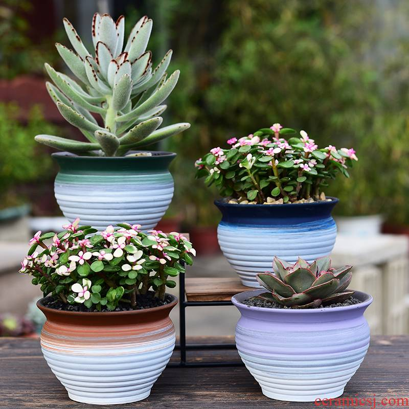 I and contracted ceramic household meat meat plant purple sand flowerpot office desktop green plant more creative potted meat basin