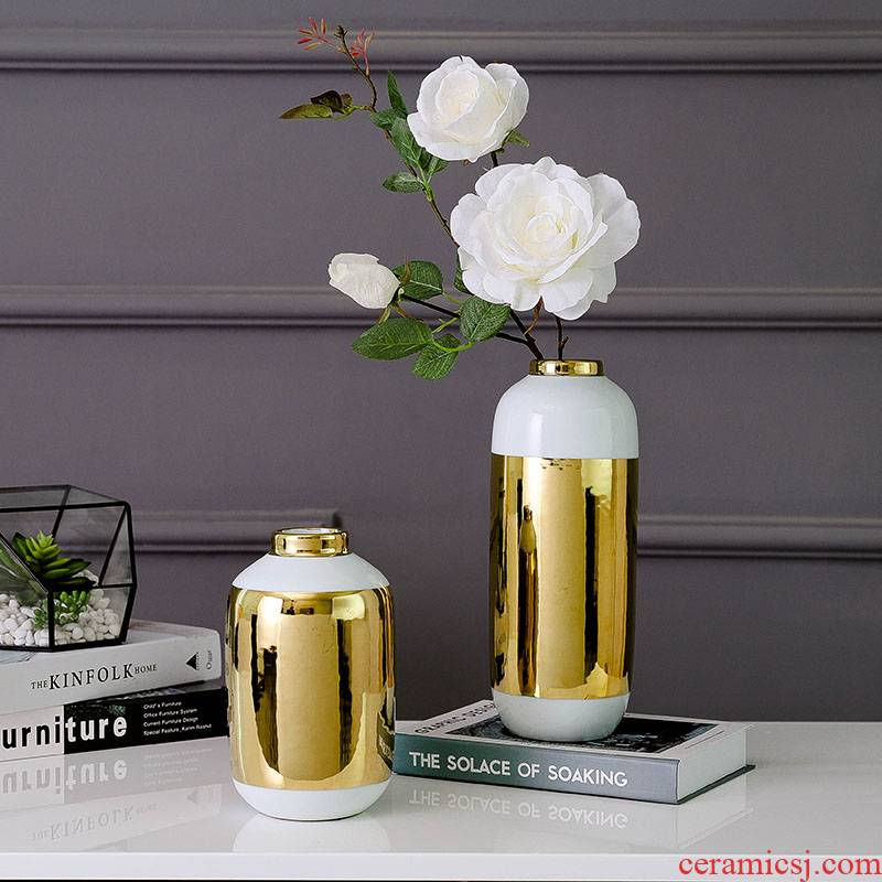 North European modern gold - plated ceramic furnishing articles on both sides of the TV all impressions vase dry flower arranging flowers is sitting room adornment