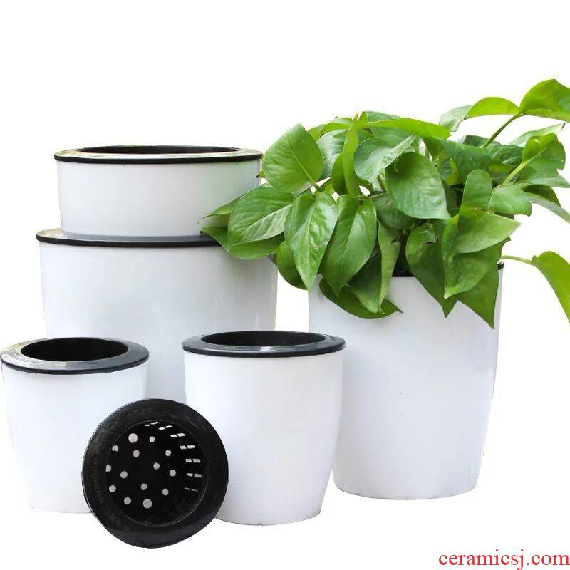 Thickening automatic suction couch potato ridging indoor office water culture more meat other medium porcelain plastic flower POTS