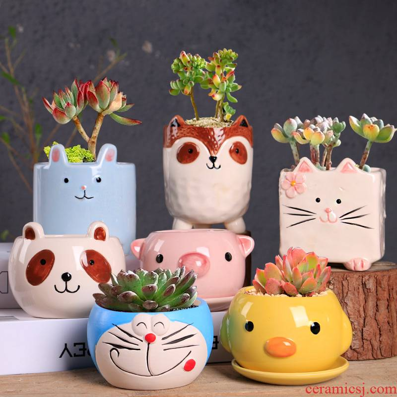 Fleshy flowerpot ceramic clearance contracted large special household large - diameter flesh creative coarse pottery breathable flower pot