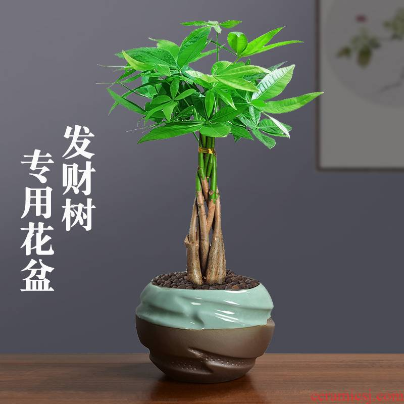 Elder brother up with medium rich tree green plant special ceramic flower pot individuality creative contracted asparagus coarse pottery purple sand tire air permeability