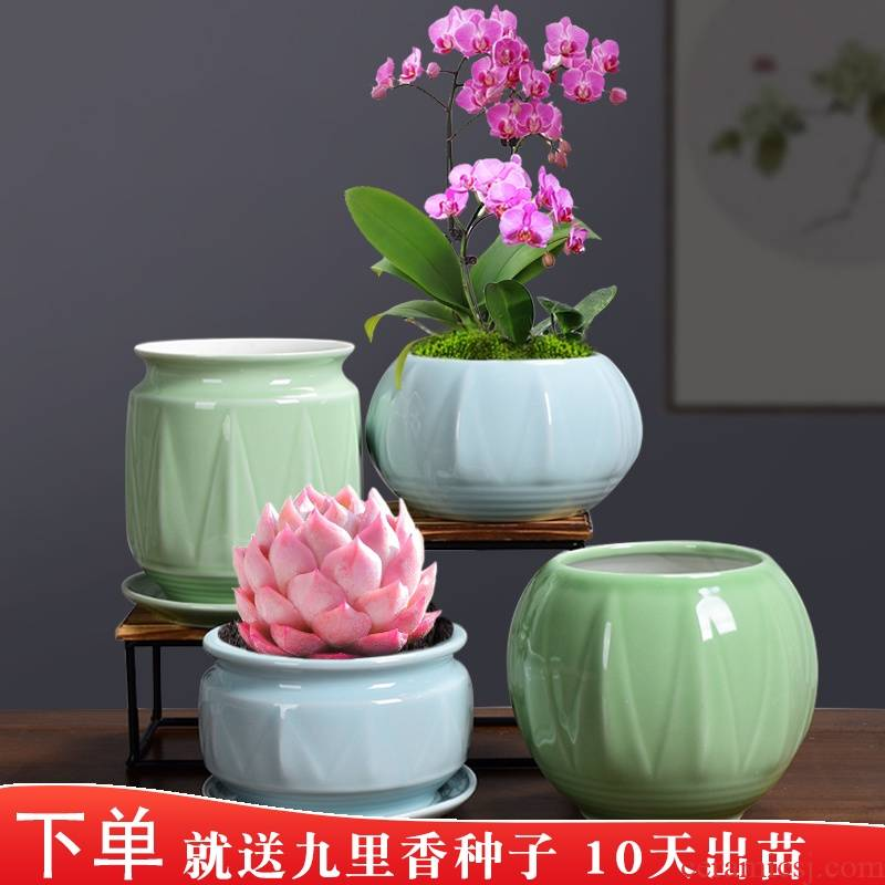 Special ceramic butterfly orchid flower POTS Special tray other desktop Nordic creative move fleshy green plant POTS