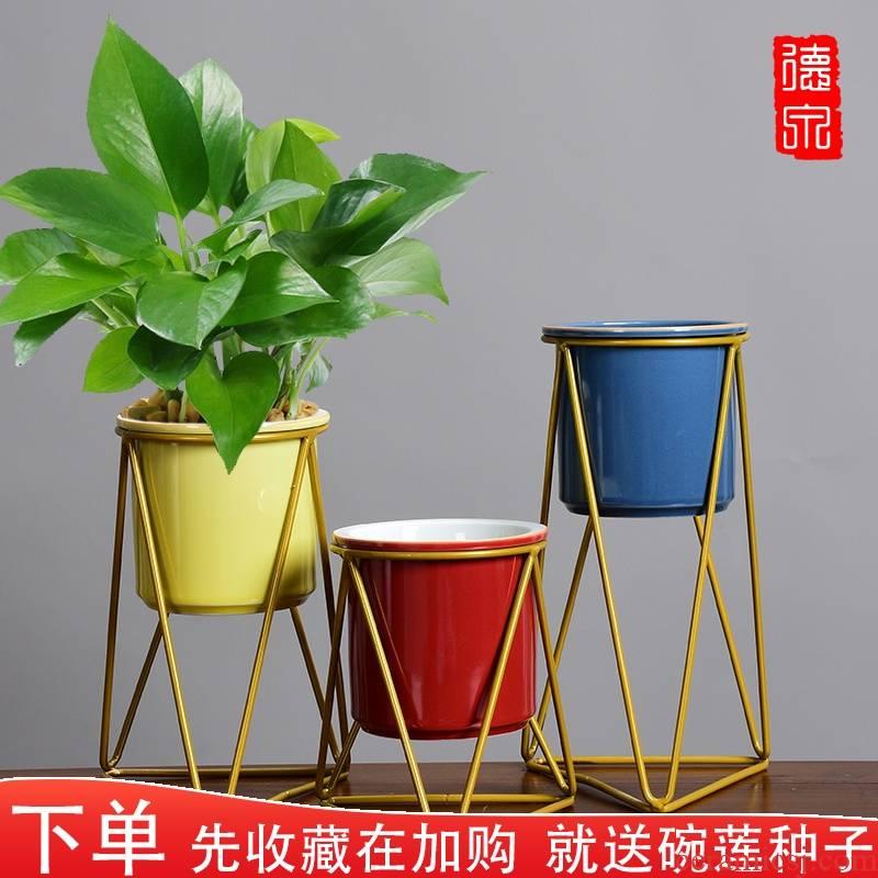 Creative hydroponic other rack copper grass calamus orchid flower POTS ceramics desktop water raise plastic container Nordic move
