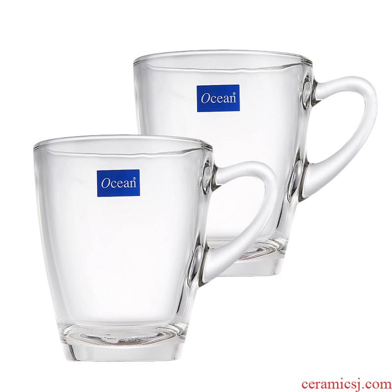Ocean import two 320 ml/gulls hin Kenyan glass cup with his coffee cup hot water cup set
