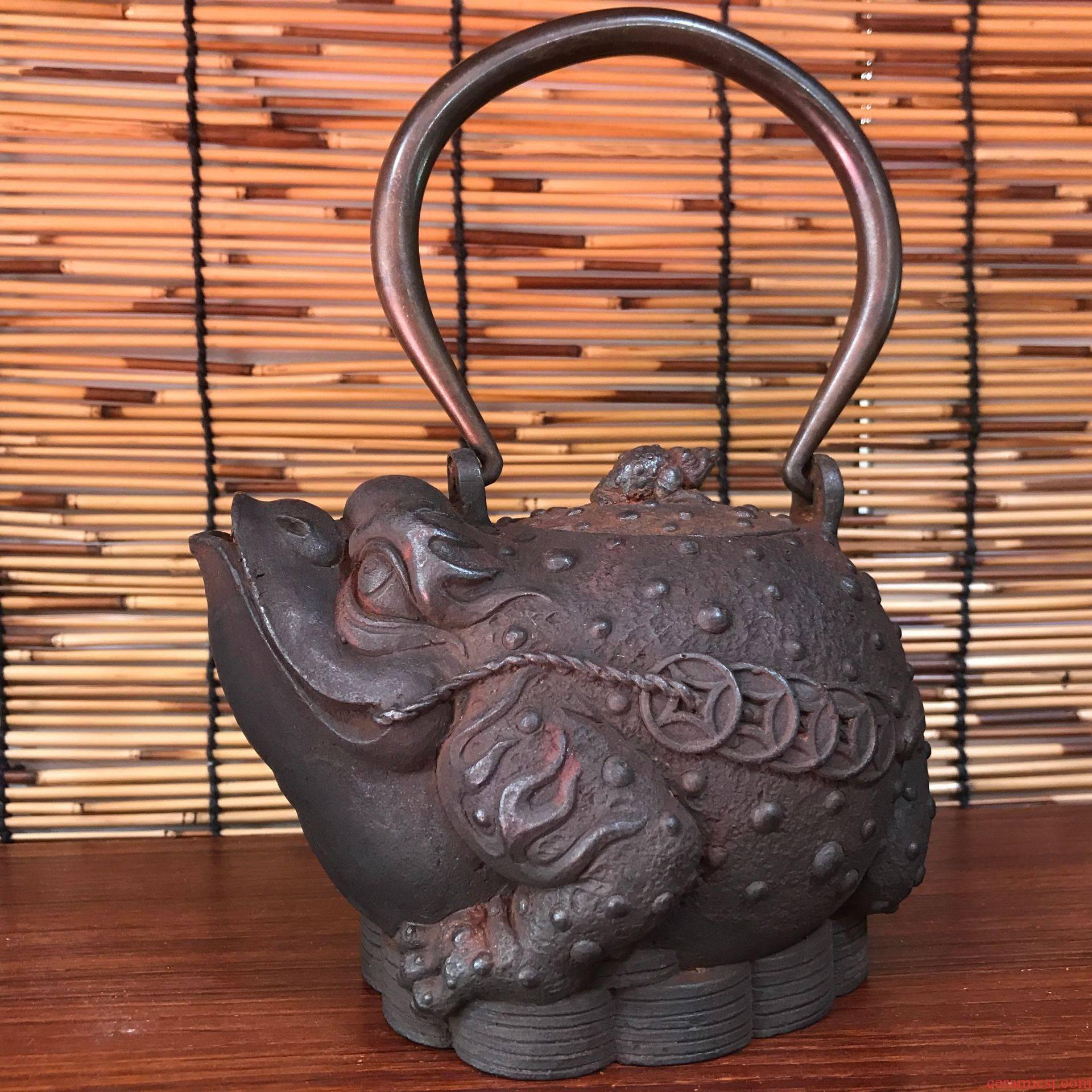 Xia Jietie pot manufacturer spittor brother pot of checking iron pot of cast iron teapot in southern Japan iron pot
