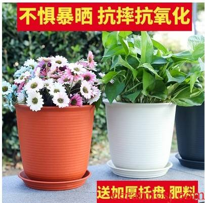 Large diameter household pot diameter ceramic coarse pottery Large hole clearance without extra Large creative daffodils in the living room