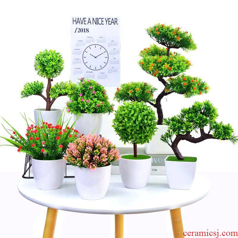 Simulation peacock tail plastic potted flowers miniascape of little sitting room, indoor tea table wine accessories desktop furnishing articles