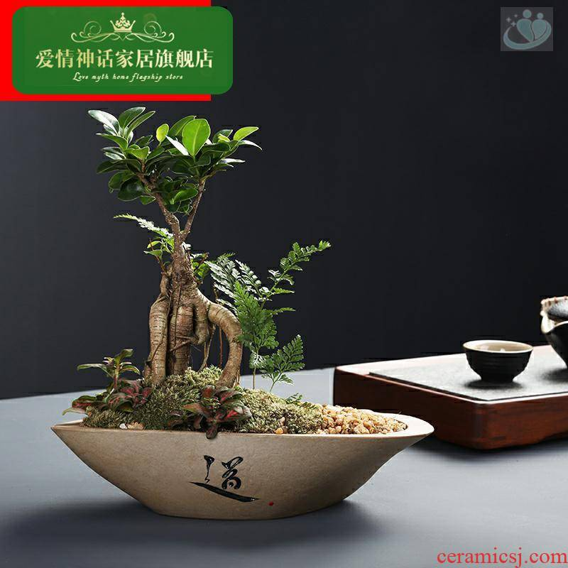 Creative imitation stone flower pot ceramic meaty plant small green plant pot desktop boutique miniascape a clearance sale