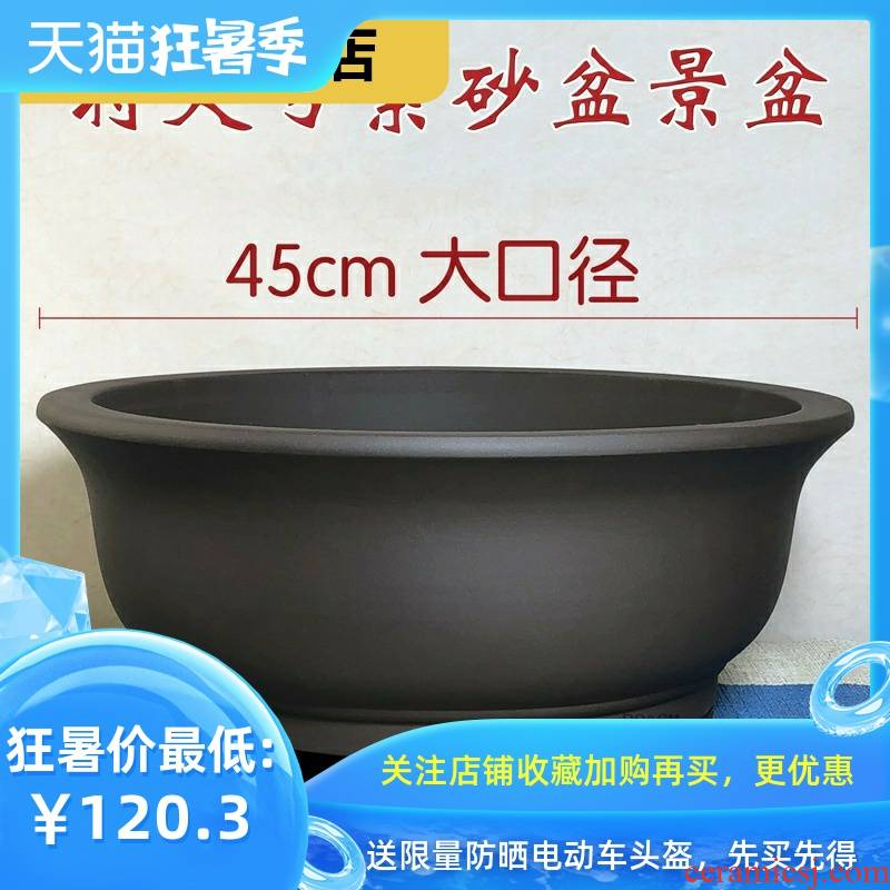 Rich, heavy heavy flowerpot miniascape of yixing ceramic flower pot pot clearance bonsai garden flowerpot be born purple