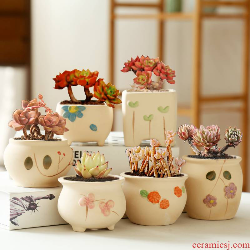 Period more breathable special offer a clearance meat meat meat flowerpot ceramic biscuit firing coloured drawing or pattern potted small creative contracted the desktop