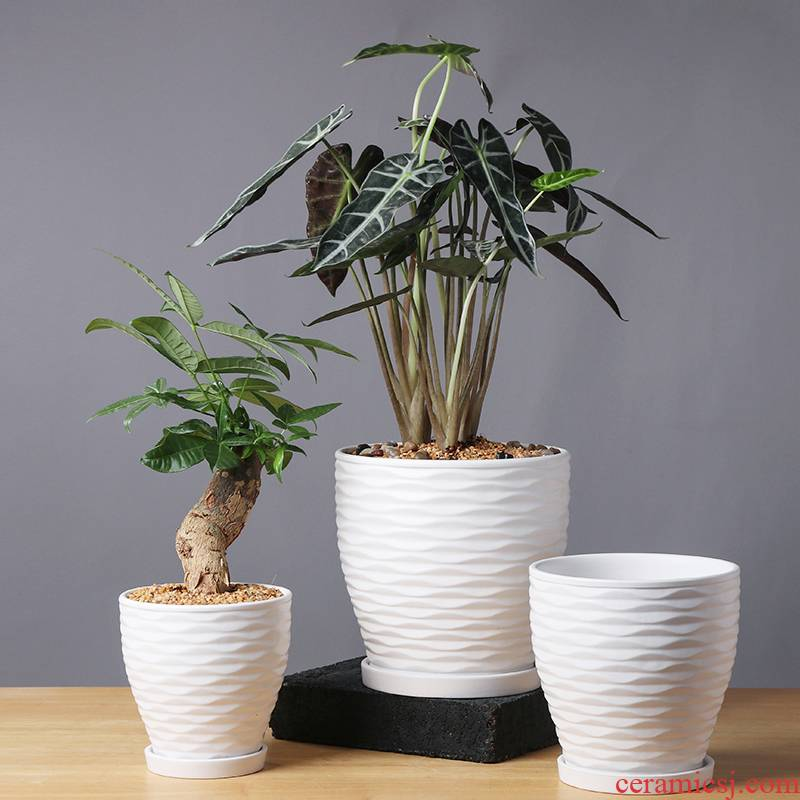 Flower pot type ceramic Nordic contracted large their individuality creative fleshy Flower pot home rich tree other the plants