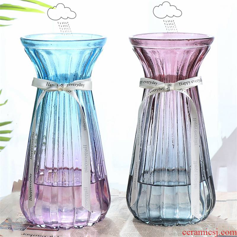 Hydroponic glass vase decoration single photographed lilies nightstand move bathroom TV ark, tea jars