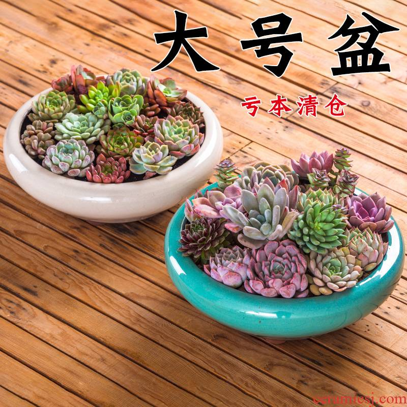 Extra large plant pot is more meat flowerpot more coarse pottery ideas they big caliber platter ceramic plant