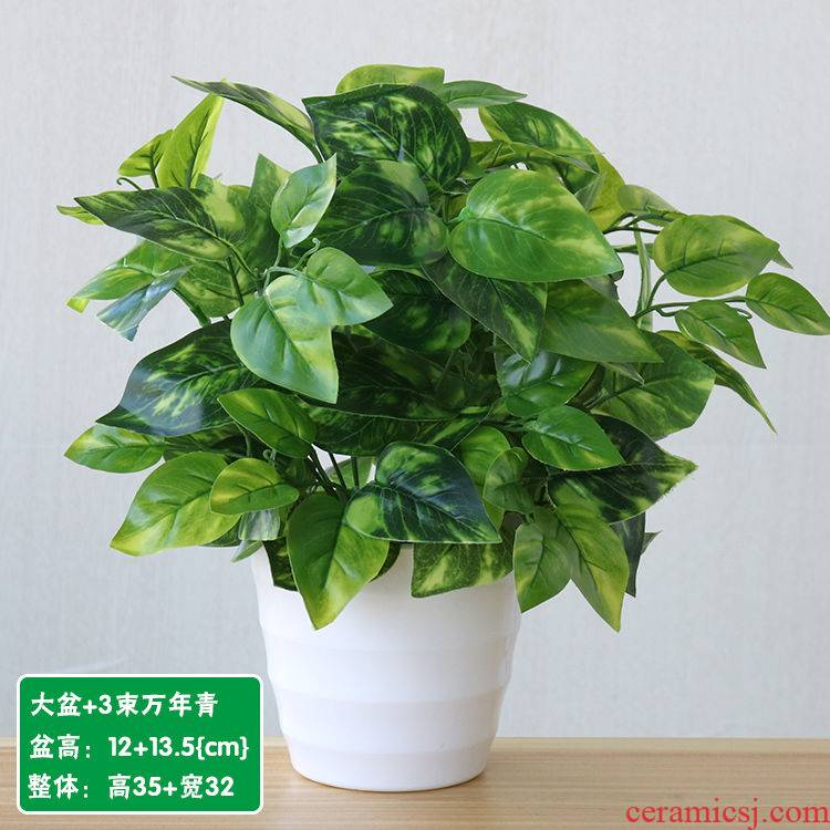 Milk tea shop interior Internet cafe potted flowers bouquets of household adornment simulation suit other green plant miniascape decoration