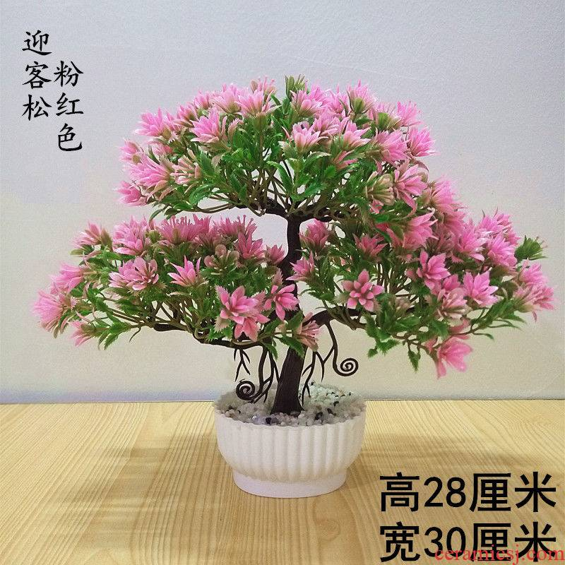 Simulation flower guest - the greeting pine auspicious tree the plants potted bonsai flowers home sitting room tea table desktop furnishing articles