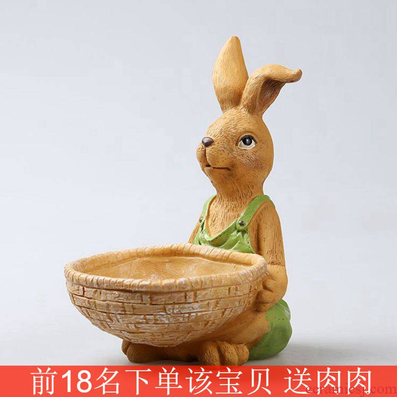 Large rabbit meat meat plant oversized Large - diameter platter fleshy flower POTS of ceramic wholesale special offer a clearance
