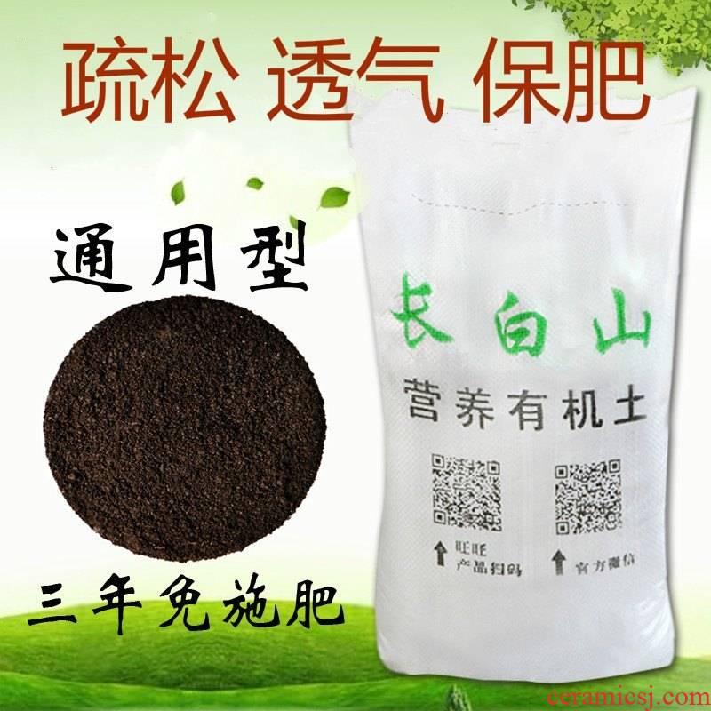 DongBeiJu black agave plant bracketplant more than other meat more general plant soil medium soil ceramsite without fertilization