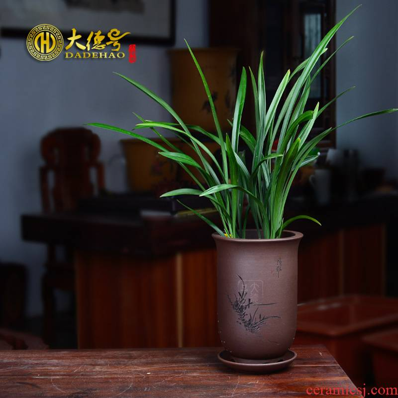 Violet arenaceous basin of clivia orchid large bracketplant, green plant round flowerpot high caliber breathable pallet ceramic flower POTS