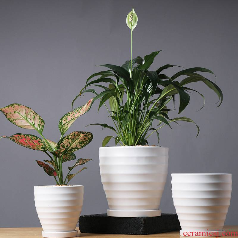 Contracted creative flowerpot ceramic large clearance other anthurium heavy meaty plant pot home boreal Europe style