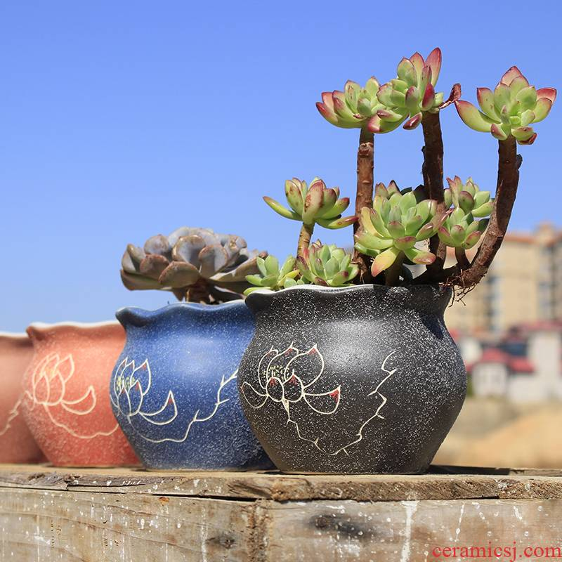 Creative ceramic special thick fleshy flowerpot TaoQing warehouse breathable flesh POTS of large diameter flower pot in contracted potted the plants
