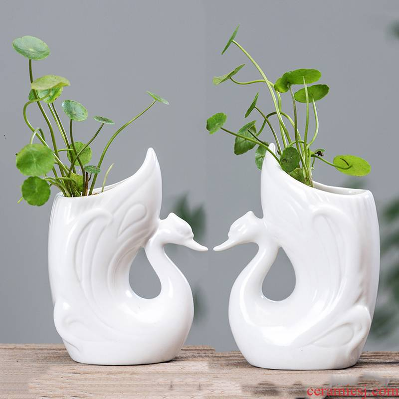 Other grass cooper hydroponic vases, ceramic creative move cartoon white water raise a flower pot sitting room desktop flowers planted