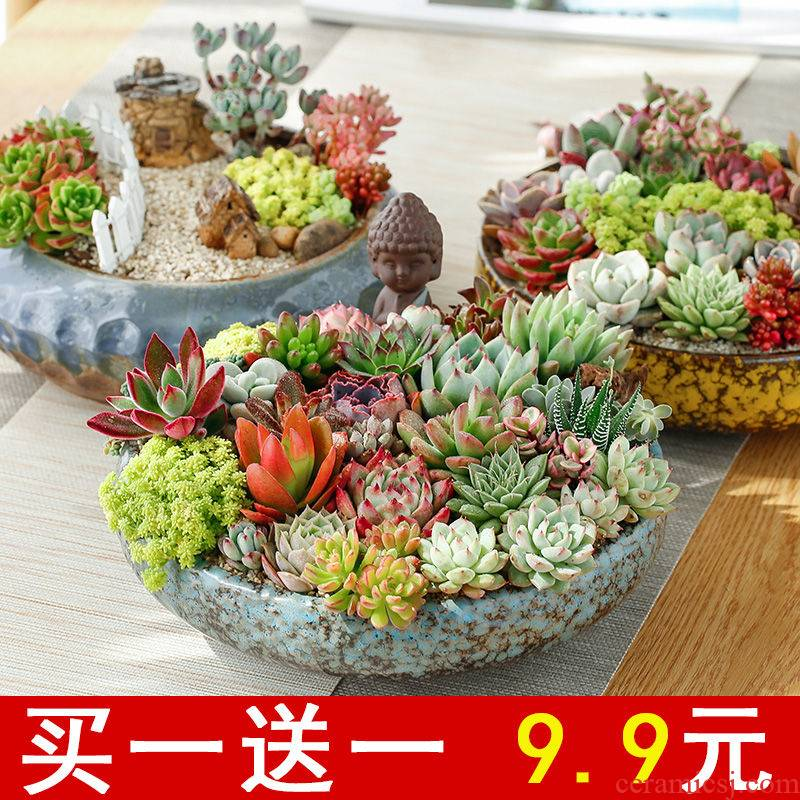 The Fleshy flower POTS, large diameter special offer a clearance package mail extra large household flowerpot ceramic large combo platter