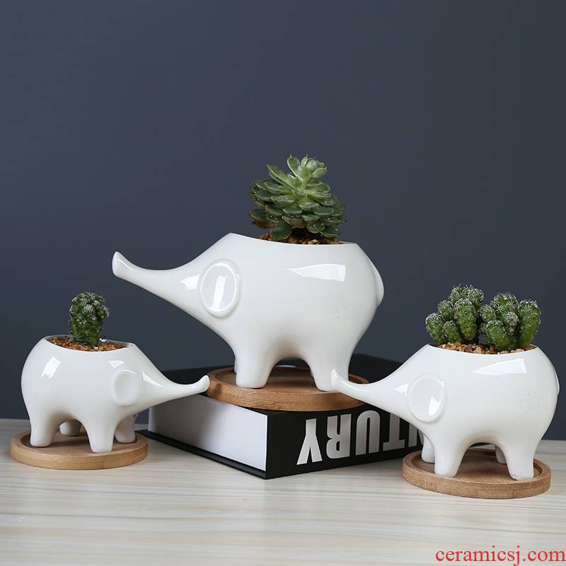 White cartoon fleshy flowerpot ceramic move to the desktop decorative the plants and animals elephants spend with tray
