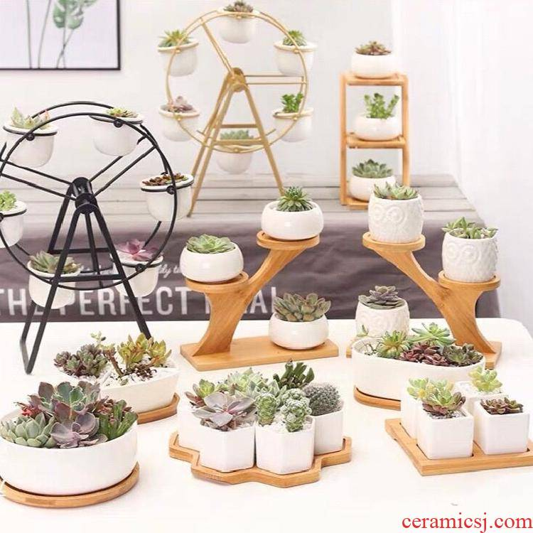 Fleshy special ceramic the plants, wrought iron flower pot in creative move, Nordic contracted white ferris wheel set combination