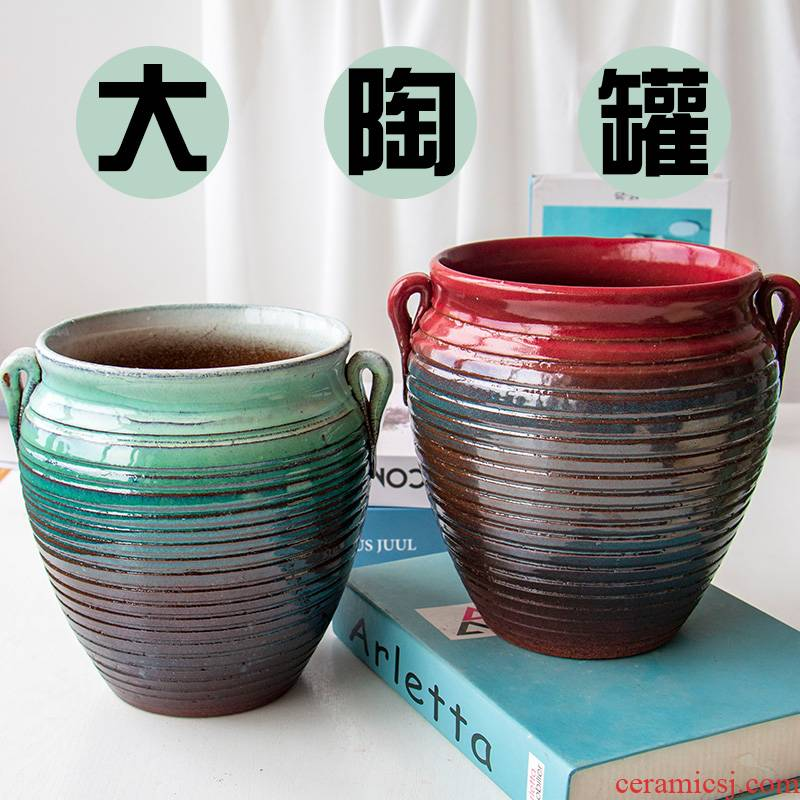 Fleshy flower pot through pockets tao old running the meaty plant purple orchid rose to heavy ceramic POTS mage flowerpot